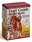 Trail Guide to the Body Flash Cards 5th Edition Volume 2 - Muscles of the Human Body
