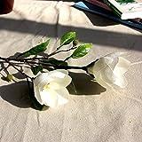 teng hong hui Flor Artificial de la Magnolia de Novia de Seda Artificial Flores de Verdad-como decoración del hogar Magnolia Seda Decoración