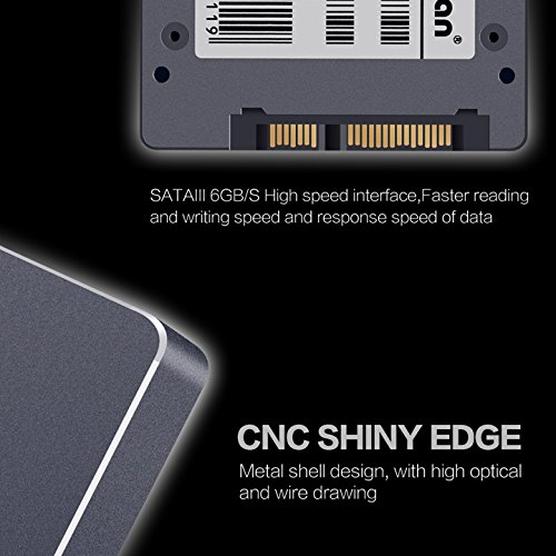 KingDian 240 GB velocidad de lectura/escritura: 560/422mb/S SATA3 interna unidad de estado sólido para el ordenador portátil PC de escritorio con 256 M de caché