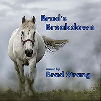 Brads Breakdown