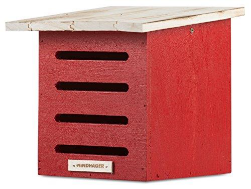 Windhager Florfliegenkasten, Winterquartier für Florfliegen, aus Massivholz, inklusive Aufhängeöse, 20 x 19 x 19 cm, Rot, 06996