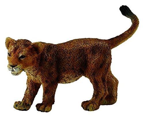 Lion - Bébé