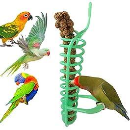 display08 Portable Hanging Spiral Feeder Birds Parrot Pet Food Fruit Holder Climb Play Toy
