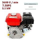 SHIOUCY Motor de gasolina 7.5 HP/5,1 kW/3600 rpm (eje...
