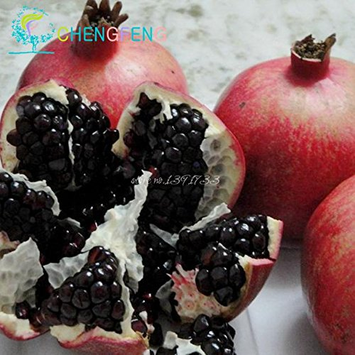 20pcs / sac grenade Mini Bonsai Graines SeedsAndPlants Plante Délicieux Fruit Graine grande et douce pour jardin Regarder Plantes Germination 95%