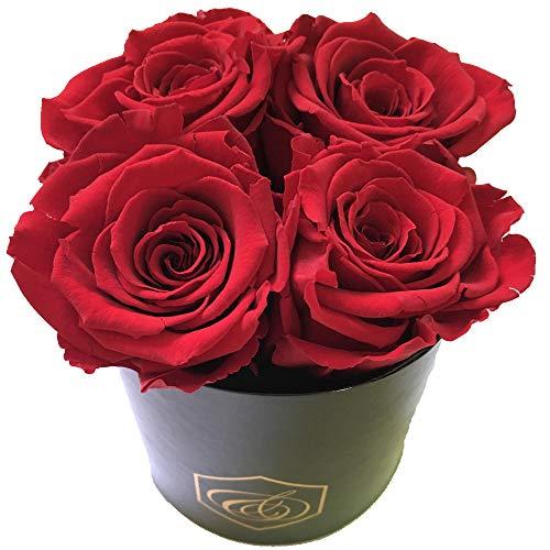 Rosenbox - Blumenbox - 4 konservierte rote XL Rosen - Ein Geschenk für die Ewigkeit
