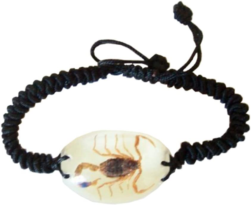 Real Brown Spring new work one after New popularity another Scorpion Bracelet the Dark in Glow