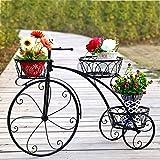 Dittzz Étagère à Fleurs en Fer - Porte Pots de Plante Fleurs Vélo Créatif Support de Pot de Fleurs Décoration pour Jardin Balcon Terrasse Couloir, 83 x 24 x 55.3cm