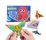 Berry President Colorido kit de origami para niños, patrones de papel de origami, con libro de origami, creatividad, para niños, principiantes y clases de manualidades escolares