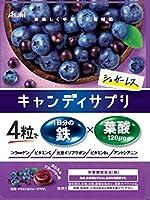 アサヒグループ食品 キャンディサプリ1日分の鉄 64g×4袋
