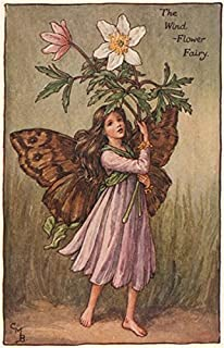 Wind-Flower Fairy by Cicely Mary Barker. Spring Flower Fairies - c1935 - old print - antique print - vintage print - Flower Fairies art prints