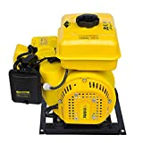5KW Electric Vehicle Gasoline Generator Range Extender Electric Start Automatic Frequency Conversion Electric Tricycle Generator (60V)