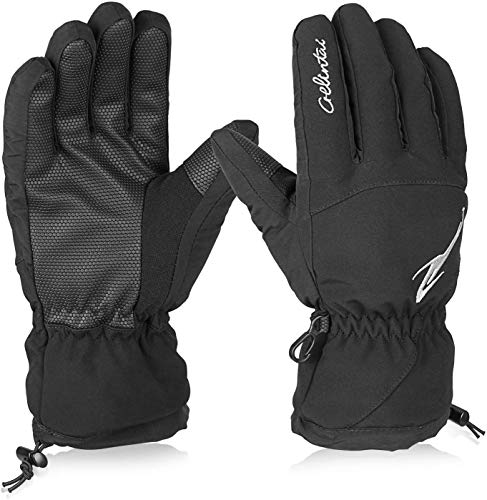 Hicool Skihandschuhe Erwachsene wasserdichte Winterhandschuhe Schnee Handschuhe Outdoor Handschuhe Sport Handschuhe für Damen und Herren (L, Schwarz)