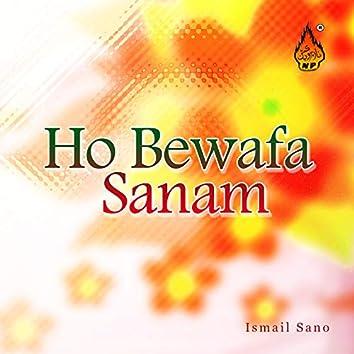 Ho Bewafa Sanam