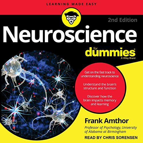 Neuroscience for Dummies, 2nd Edition Titelbild