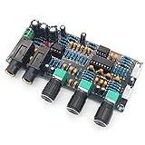 ARCELI XH-M273 PT2399 Tablero del Amplificador de micrófono Digital Reverberación Karaoke Ok Amplificador de reverberación NE5532 Tablero de Tono del Amplificador previo