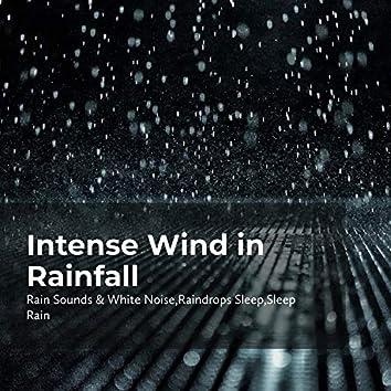 Intense Wind in Rainfall