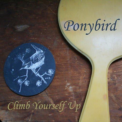 Ponybird