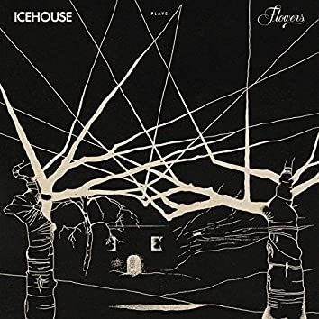 ICEHOUSE Plays Flowers Live