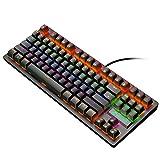 Mechanical Keyboard - 87 Keys Layout Gaming Keyboard, LED Rainbow Backlit Blue Switches Wired (36.5x14cm, Black)