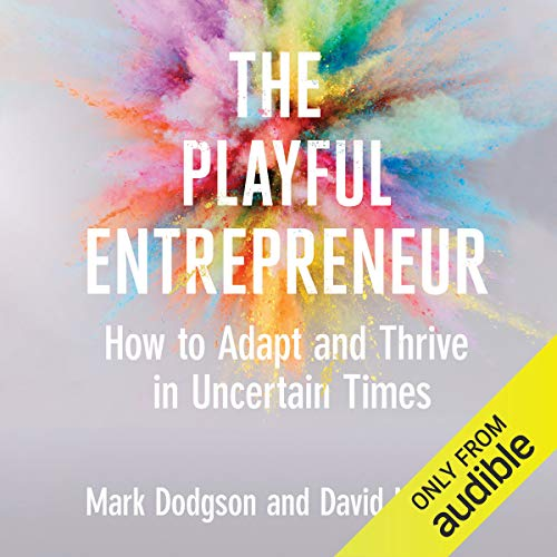 Couverture de The Playful Entrepreneur