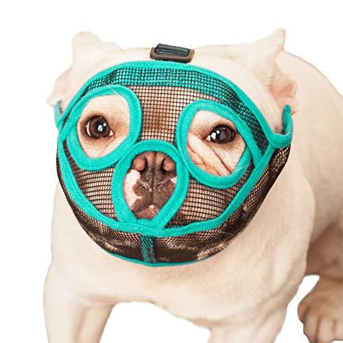 ILEPARK Maulkorb für Hunde mit kurzer Schnauze, Englische Bulldogge, Französische Bulldogge Maulkorb Anti-Beißen, Kauen, Bellen (XL, Grün)
