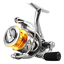 Best saltwater spinning reels with SeaKnight Rapid