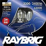 RAYBRIG(レイブリック) ヘッドランプ用 LEDバルブ 12V/24V兼用 H4 6300ケルビン 2個入 4輪用 RK41