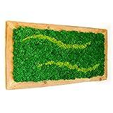 Moosbild Islandmoos - Moosbilder mit Rahmen als Wandbild aus Reiner Handarbeit als Deko Blickfang für Augen und Hände - Pflegefreies Island-Moos Bild Grün (110 x 60)