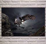 NOVELOVE Imagen de Arte de Pared Cóndor andino Animal Cartel Impresión Lienzo Pintura Regalo Sin Marco 40 * 60 cm
