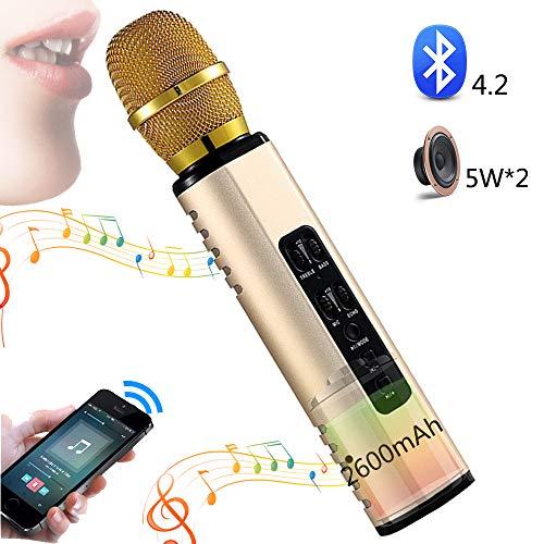 SHENGY Micrófono de Karaoke inalámbrico, Altavoz de 10 vatios, micrófono portátil Bluetooth, Puede Grabar Mike, Compatible con PC, iPad, iPhone, Android, para Cantar en Fiestas