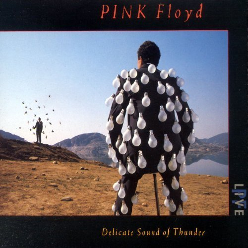 Delicate Sound of Thunder: Live Import Edition by Pink Floyd (2009) Audio CD