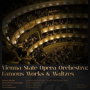 Vienna State Opera Orchestra: Famous Works & Waltzes