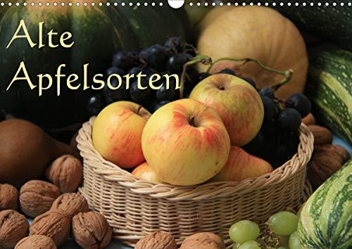 Alte Apfelsorten (Wandkalender 2021 DIN...