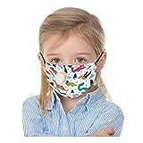 SHUANGA Mask Anti-Pollution poussière, Mask de fumée en Charbon Actif PM2,5 Mask Filtre à air, Mask de Réutilisable Protection Faciale pour Enfant
