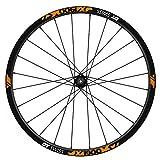 Pegatinas Llantas Bicicleta DT Swiss X1900 25 WH77 Naranja