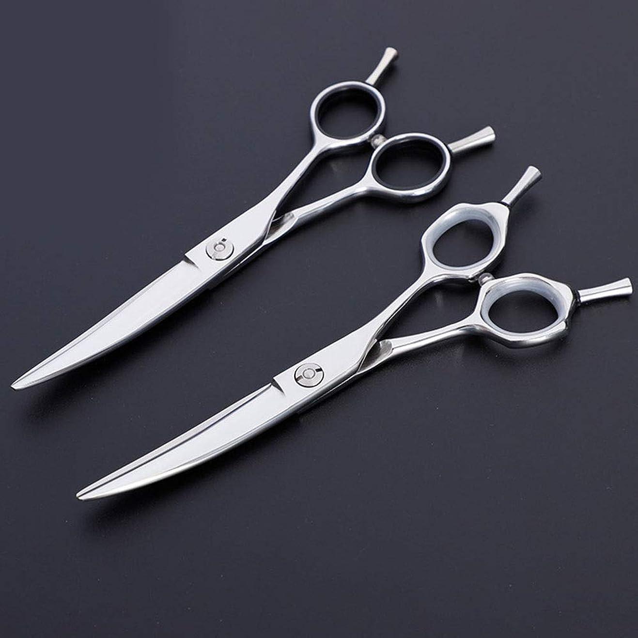 米国ありそう疎外理髪用はさみ 6インチプロフェッショナル理髪はさみ、ペット用はさみ、トリミングはさみヘアカットはさみステンレス理髪はさみ (色 : Silver)