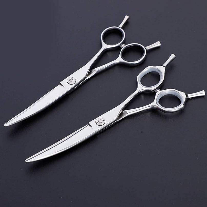 宇宙のツール国勢調査6インチプロフェッショナル理髪用はさみ、ペット用はさみ モデリングツール (色 : Silver)