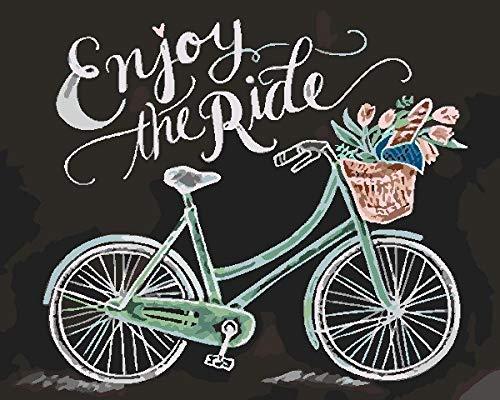 Pintura al Óleo de Diy por Kits de los Números,Cesta de Flores de Bicicleta Pintura al Óleo de la Lona Adultos y Principiante del Dibujo con los Cepillos Sin el Marco -40X50 cm