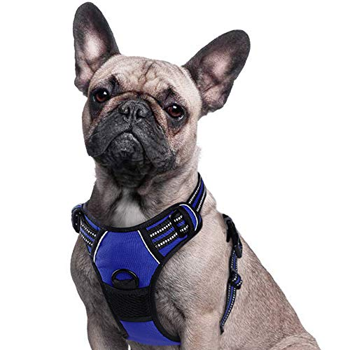 Eagloo Dog Harness No Pull, Walking Pet Harness with 2 Metal Rings and Handle Adjustable Reflective Breathable Oxford Soft Vest Easy Control Front Clip Harness Outdoor for Small Dogs Blue