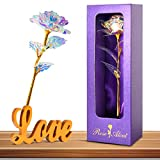 Innge Gifts for Women,Rainbow Rose Artificial Flower w/Love Stand...