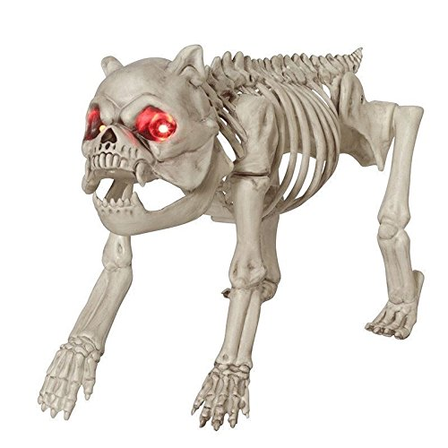 Skeleton Dog with Red Eyes