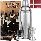 Bartender Cocktail Shaker Set w/a Double Jigger & 2 Liquor Pourers by BARVIVO - 24oz Martini Mixer...