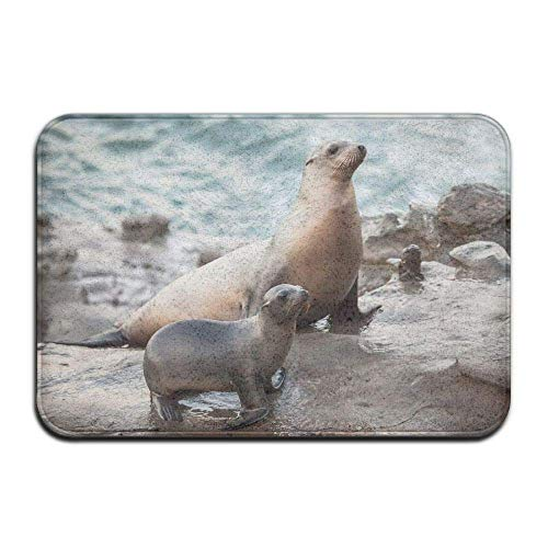 Klotr Felpudos, Non-Slip Stain Fade Resistant Door Mat Sea Lion Mom and Baby Living Dining Room Rug 23.6 X 15.7 Inch