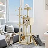 Cat Furniture Review and Comparison
