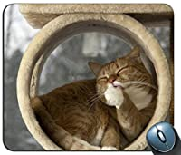 猫の唇をなめる残り85802パーソナライズされた長方形のマウスパッド、印刷された滑り止めゴム快適なカスタマイズされたコンピューターマウスパッドマウスマットマウスパッド