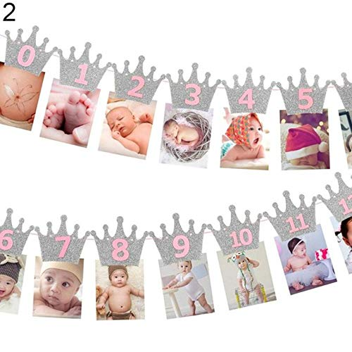 Crown Baby Photo Banner - 12 Months Picture Garland (RSLN), Baby First Year Frame, Nursery Banner Photo Frame (#2-Girl-Pink-Silver)