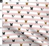 Streifen, Streifen, Hunde, Französische Bulldogge,