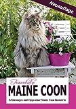 Traumkatze Maine Coon - Erfahrungen und Tipps einer Maine Coon Besitzerin