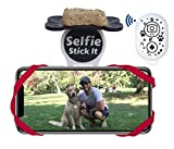 Dog Selfie Sticks - Best Reviews Guide
